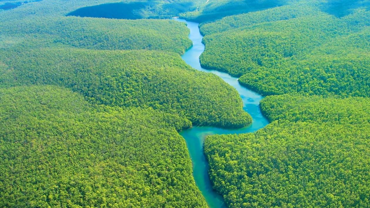 Peru utazás esőerdő